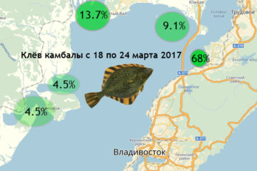Карта клёва во Владивостоке. Камбала с 18 по 24 марта. Опрос!