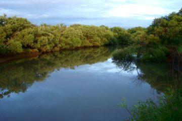 Река Мельгуновка (Мо)