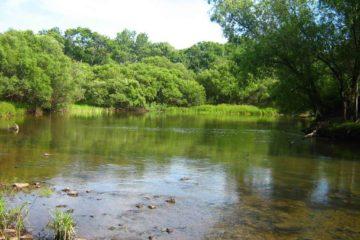 Река Лефу (Илистая)