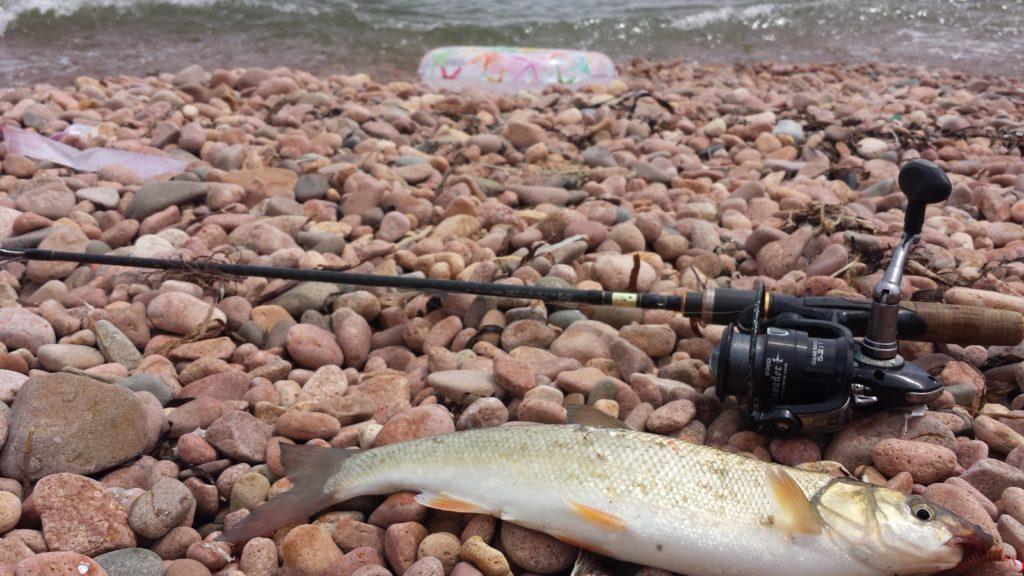 """Отчет о рыбалке на пляже бухты """"Новый джигит"""""""