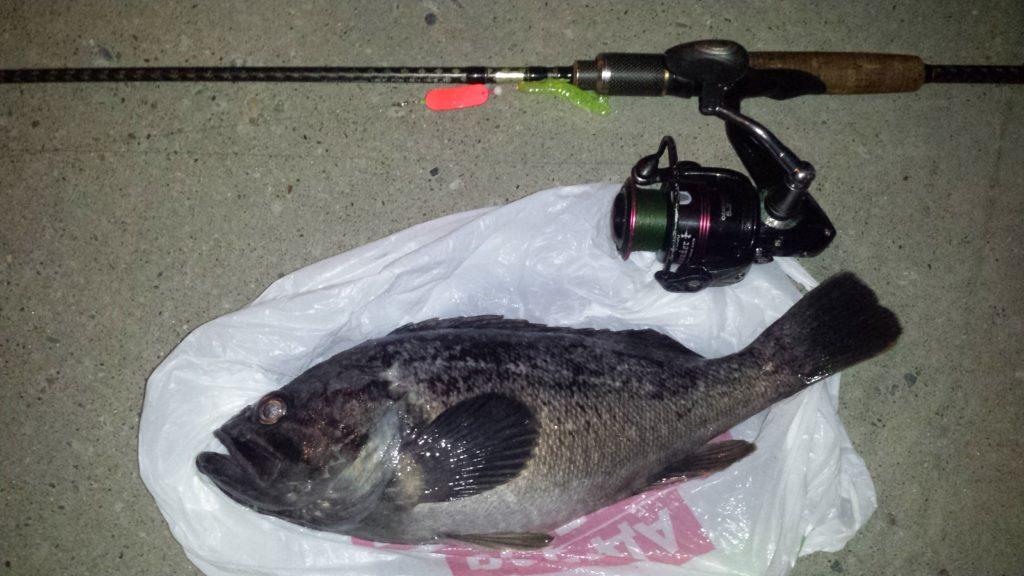 рыбалка в августе на судака