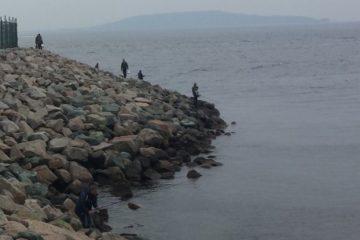 Отчёт о рыбалке на Терпуга под мостом. Октябрь 2017