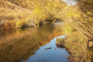 Отчёт о рыбалке на горной речке в октябре (р. Артёмовка)