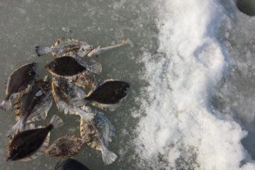 Отчет о рыбалке в тавричанке, синие гаражи