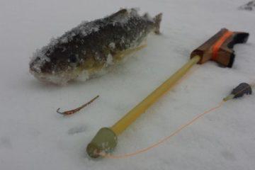 Отчёт о рыбалке 3 марта. Татарка.