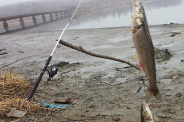 Отчёт о рыбалке на Майхэ. Красноперка пошла.